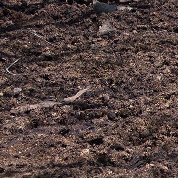Picture of Cow Manure - Delivered & Installed